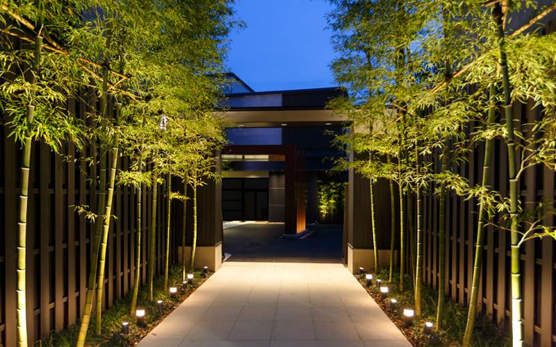 bamboo plants walkway with garden lights